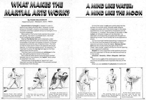 0_comic_americano_artes_marciales_012.jpg