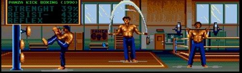 panza_kick_boxing_.jpg