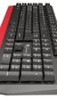 Genesis presenta el teclado económico Rhod 250