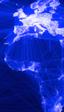 Facebook alcanza los 100 millones de usuarios en África, la mitad de su población con conexión a Internet