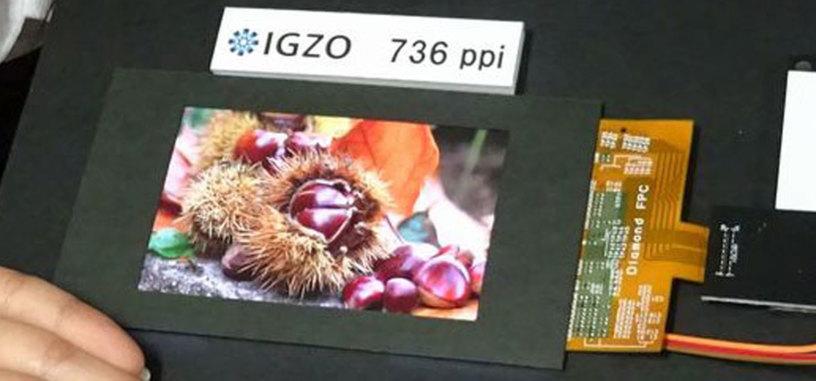 Sharp presenta una pantalla de 4,1 pulgadas con resolución 2560 x 1600 píxels