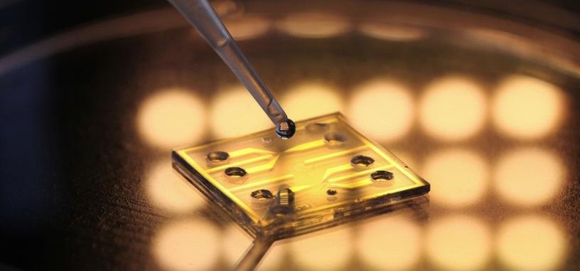 Un nuevo sensor detecta la contaminación del agua al instante