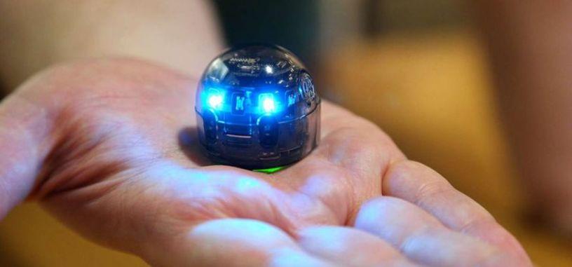 Evo es un pequeño robot que busca animar a los niños a aprender a programar