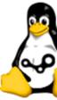 Los nuevos drivers R310 de Nvidia para Linux doblan el rendimiento de las tarjetas GeForce 600, con la ayuda de Valve