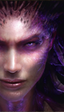 Blizzard pone de oferta los juegos y expansiones de World of Warcraft y Starcraft 2