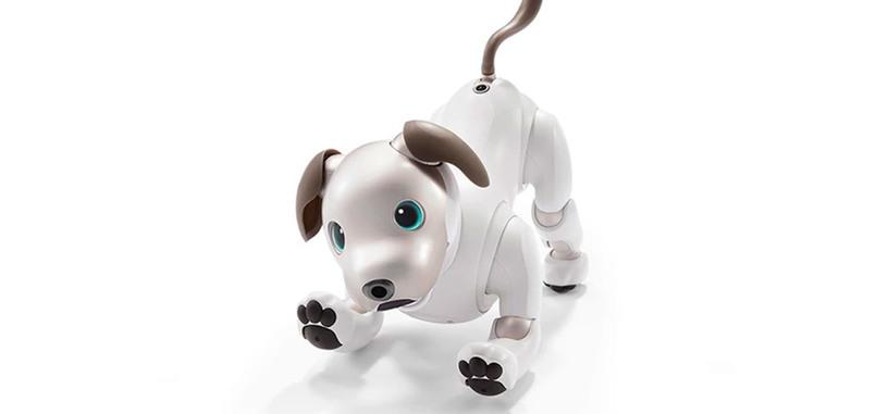 Sony recupera su perro robot Aibo, ahora con inteligencia artificial y encanto extra