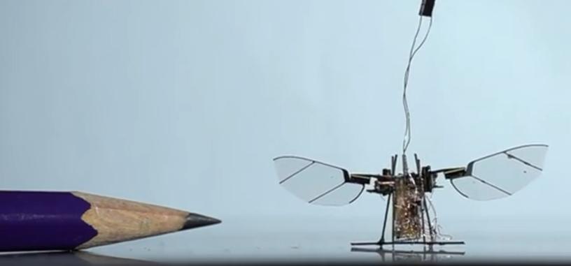 RoboFly es un dron tamaño insecto cuya energía es suministrada por un láser